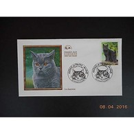 FDC - Chat, Le Chartreux - 02/10/1999 Gennevilliers - FDC