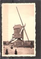 Lommel     Windmolen  Nieuwstraat - Lommel