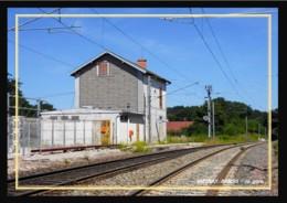 39  MESNAY  ARBOIS  -  La  Gare - France