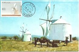 Carte Maximum - Portugal - Moulin - Windmill - Moinho De Vento Fixo Caldas Da Rainha - Cartoline Maximum