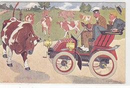 Bue Contro Automobile - Firmata         (A-147-190616) - Illustratori & Fotografie