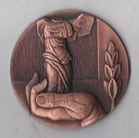 Rare Grosse Médaille La Victoire De Samothrace - Francia