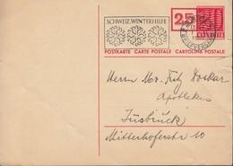 SCHWEIZ Postkarte P 193, Stempel: Zürich 1.XI.1950 - Ganzsachen