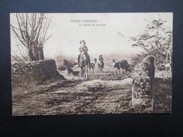 CP FRANCE (V1812) LANDES 40 (2 Vues) SCèNES LANDAISES - Le Retour Du Paccage 1913 - France