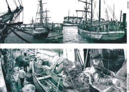 4 -  Photographies Bateaux De Terre-Neuvas - Boats