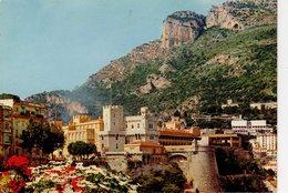 Monaco Le Palais Princier Et La Tête De Chien éditeur Rion à Nice - Palacio Del Príncipe