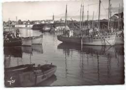 Treboul-Douarnenez. Le Port De Tréboul Et Ses Bateaux. Retour De Peche  Postée 1964. Edit JOS2139 - Tréboul