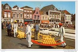 CPM .Alkmaa Marché Aux Fromages - Alkmaar