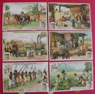 6 Chromo Liebig. La Culture Du Coton. 1909. S 952. Chromos. édition Française - Liebig