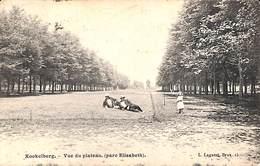 Koekelberg - Vue Du Plateau (parc Elisabeth) Animée, L Lagaert 1907 - Koekelberg