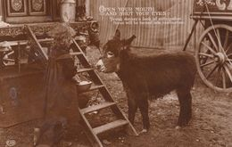 Romany Gipsy Donkey With Gypsy Child Real Photo Old 1904 Postcard - Postales