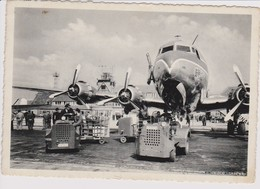 Vintage Rppc Sabena Belgium World Airlines Douglas Dc-6 @ Melsbroek Airport - 1919-1938: Entre Guerres