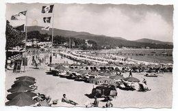CAVALAIRE SUR MER--1959--La Plage ( Animée ,drapeaux ) ..timbre....cachet.........à Saisir - Cavalaire-sur-Mer