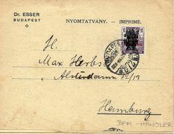 Publicite De Philatelie. Lettre Vers Allemagne 1920 Voir 2 Scan Pour Le Tarif De Timbres ! - Hongrie