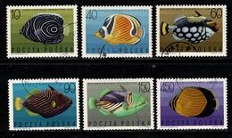 Polska 1967 Yv 1599/1604,  (fishes - Vissen - Poissons) Obl. -  Gebr. - Used - Oblitérés