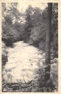 Erezée - L'Aisne à Blier - Erezée
