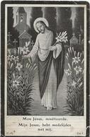 DP. HENRI DEVRIESE ° OOST-ROOSBEKE 1851- + 1915 - Godsdienst & Esoterisme