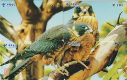 PUZZLE De 4 TC Chine - ANIMAL - OISEAU Rapace - FAUCON - HAWK BIRD Phonecards Telefonkarten - 4506 - Puzzles