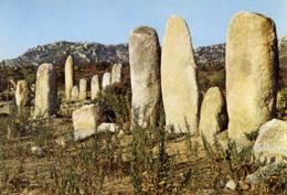 CPM .Menhirs De Paliagio.environs De Sartène - Corse