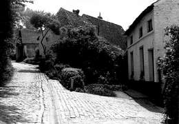 RARE Brussel St-Agatha-Berchem Berchem Ste Agathe Groendreef Aktiegroep Leefmilieu Foto Johan Van Dyck Barry 2390 - Berchem-Ste-Agathe - St-Agatha-Berchem