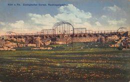 Germany Koeln Zoo Garden Birds Cage Postcard - Autres