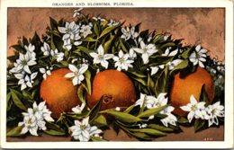 Florida Oranges And Blossoms - Vereinigte Staaten