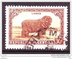 Argentine, Argentina, Laine, Moutin, Textile, Lamb, Wool - Ferme