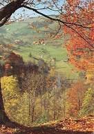 Es Herbstelt Gesamtansicht Village General View Foto: E Gnaedig - Allemagne