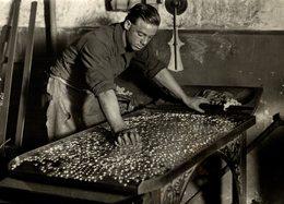 THE ROYAL MINT   Numismática Numismatica Numismatics 20*15CM Fonds Victor FORBIN 1864-1947 - Profesiones