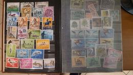Italia/San Marino/Vaticano - Album Con Oltre 300 Francobolli Tutti Commemorativi * A.R. - Stamps