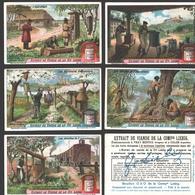 Liebig - Vintage Chromos - Series Of 6 / Série Complète - Les Abeilles Et L'Apiculture - En Français - Liebig