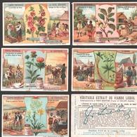 Liebig - Vintage Chromos - Series Of 6 / Série Complète - Plantes Tinctoriales - En Français - Liebig