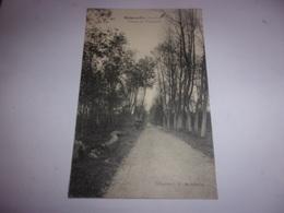 91 BOIGNEVILLE AVENUE DE CHANTAMBRE 1910 - Other Municipalities