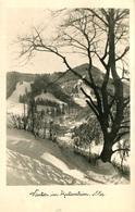 Winter In Gutenstein  1951  (007754) - Gutenstein