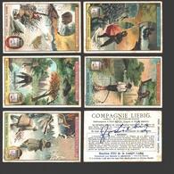 Liebig - Vintage Chromos - Series Of 6 / Série Complète - Chasseurs De Fourrures - En Français - Liebig