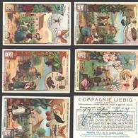Liebig - Vintage Chromos - Series Of 6 / Série Complète - Fruits Et Leurs Ennemis Du Règne Animal - En Français - Liebig