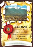 66-PRADES-N° 4407-C/0247 - Prades