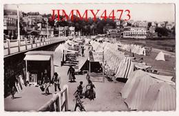 CPSM Dentelées - SAINT CAST 22 Côtes Du Nord - La Grande Plage, Bien Animée En 1951 - Edit. Du Moulin - Sartrouville - Saint-Cast-le-Guildo