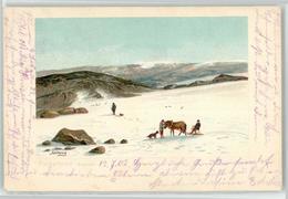 53099707 - Hardangerfjord - Noorwegen