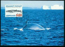 Mk Greenland Maximum Card 1997 MiNr 307 Y | Whales, Sei Whale - Cartes-Maximum (CM)