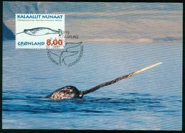 Mk Greenland Maximum Card 1997 MiNr 308 Y | Whales, Narwhal - Cartes-Maximum (CM)