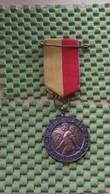 Medaille :Netherlands  - Kalorama Wandeltocht - Nijmegen - Brons  / Vintage Medal - Walking Association - Nederland