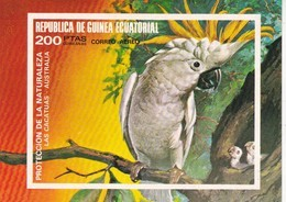 Guinea Ecuatorial Hb Sin Dentar - Äquatorial-Guinea