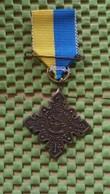 Medaille :Netherlands  -  W.S.V Snertwandeltocht Y.M.C.A.- Doetinchem  / Vintage Medal - Walking Association - Nederland