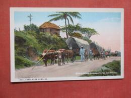 Bull Carts Near Humacao   Puerto Rico Ref 3759 - Puerto Rico