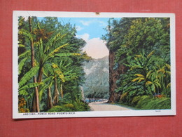 Arecibo Ponce Road   Puerto Rico Ref 3759 - Puerto Rico