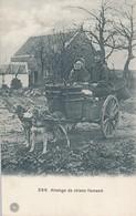 Melkboerin Hondenkar Laitière Flamande Attelage à Chiens, 1911 °366 G. Hermans - Spannen