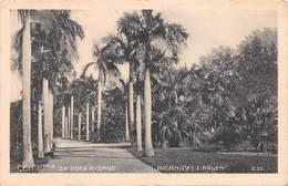 INDIA - CALCUTTA - ORIDONE AVENUE - BOTANICAL GARDENS ~ AN OLD POSTCARD #99615 - India