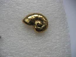 Pin's Escargot Doré - Animali