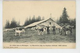 LES HOPITAUX NEUFS (environs) - Un Chalet Dans La Montagne - La Marandine - Autres Communes